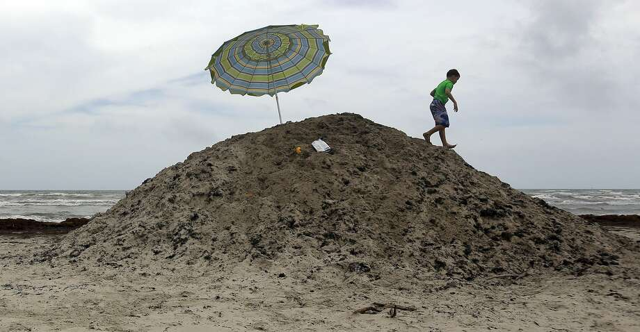 A young boy plays on a pile of seaweed on the beach, Tuesday, June 24, 2014, in Port Aransas, Texas. The Sargassum is piled and removed as it continues to wash onto the beach. (AP Photo/Eric Gay) Photo: Eric Gay, Associated Press