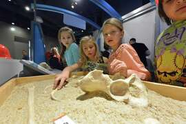 Hands-on exhibits make learning fun at the Discovery Children's Museum in Las Vegas.