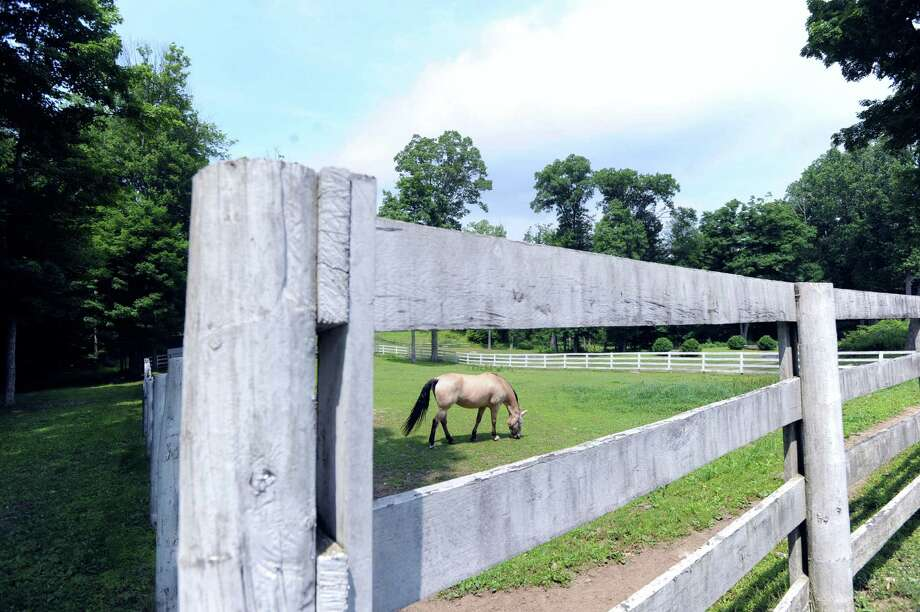 A horse grazes in a field on the 25.3 acre property that is for sale with an asking price of $13,900,000 at 50 Lafrentz Rd., Greenwich, Conn., Wednesday, June 25, 2014. Photo: Bob Luckey / Greenwich Time