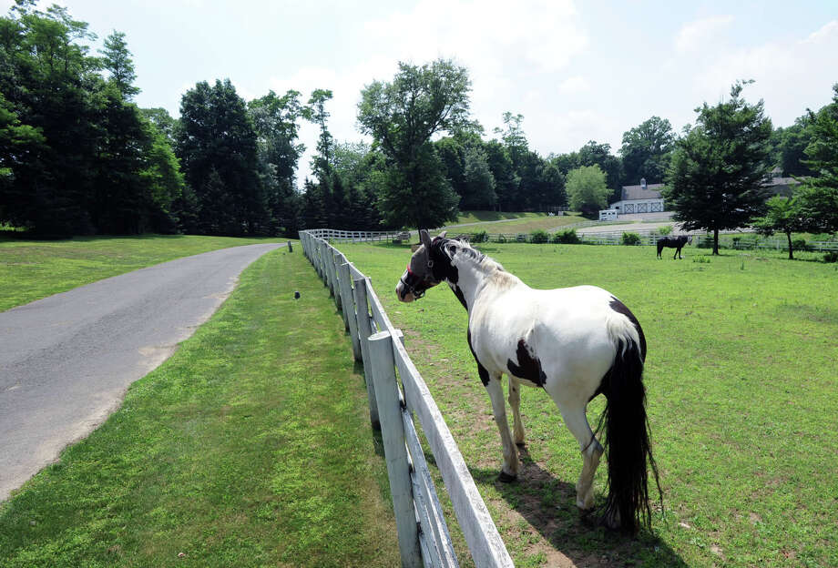 Two horses in a pasture on the 25.3 acre property that is for sale with an asking price of $13,900,000 at 50 Lafrentz Rd., Greenwich, Conn., Wednesday, June 25, 2014. Photo: Bob Luckey / Greenwich Time