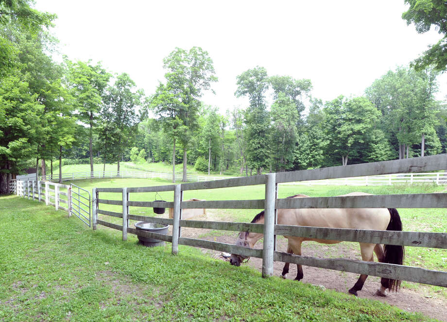 A horse grazes in a pasture on the 25.3 acre property that is for sale with an asking price of $13,900,000 at 50 Lafrentz Rd., Greenwich, Conn., Wednesday, June 25, 2014. Photo: Bob Luckey / Greenwich Time