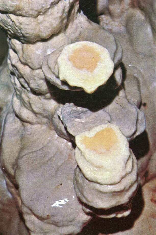 "The famous ""fried eggs"" formation in the caverns. Photo: Courtesy: Natural Bridge Caverns"