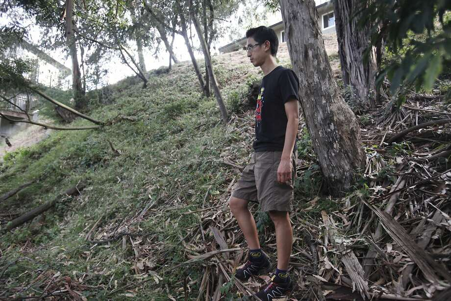 Jeff Shih points out piles of debris in an overgrown lot adjacent to his house (in background) in the Oakland hills. Photo: Leah Millis, The Chronicle