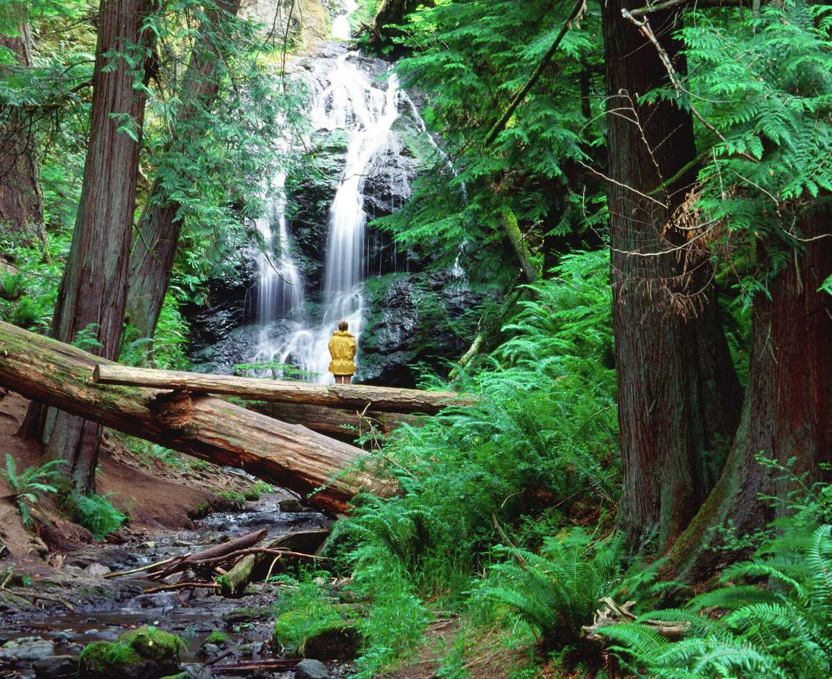 The Cascade Falls Trail in Moran State Park on Orcas Island passes through lush forest and yields beautiful waterfall views.