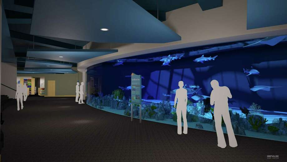 This illustration shows the upgrades planned for the Texas State Aquarium during a $50 million expansion set to be completed by early 2017. Photo: Courtesy Illustration/Texas State Aquarium