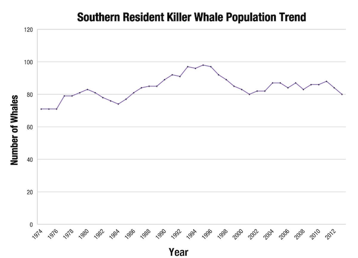 """NOAA's population overview: """"As a result of a steep decline in abundance in the mid to late 1990s, the population was listed as endangered under the Endangered Species Act. The population has declined since then, and consisted of 82 whales in the summer of 2013."""""""