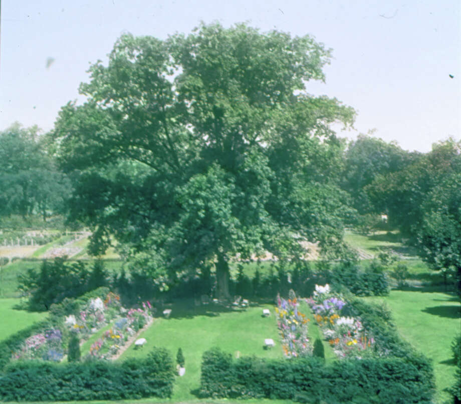 "Above is Mabel Osgood Wright's painted slide of ""Mrs. John Dewitt's Sunken Garden,"" about 1900. Photo: Contributed Photo / Connecticut Post Contributed"