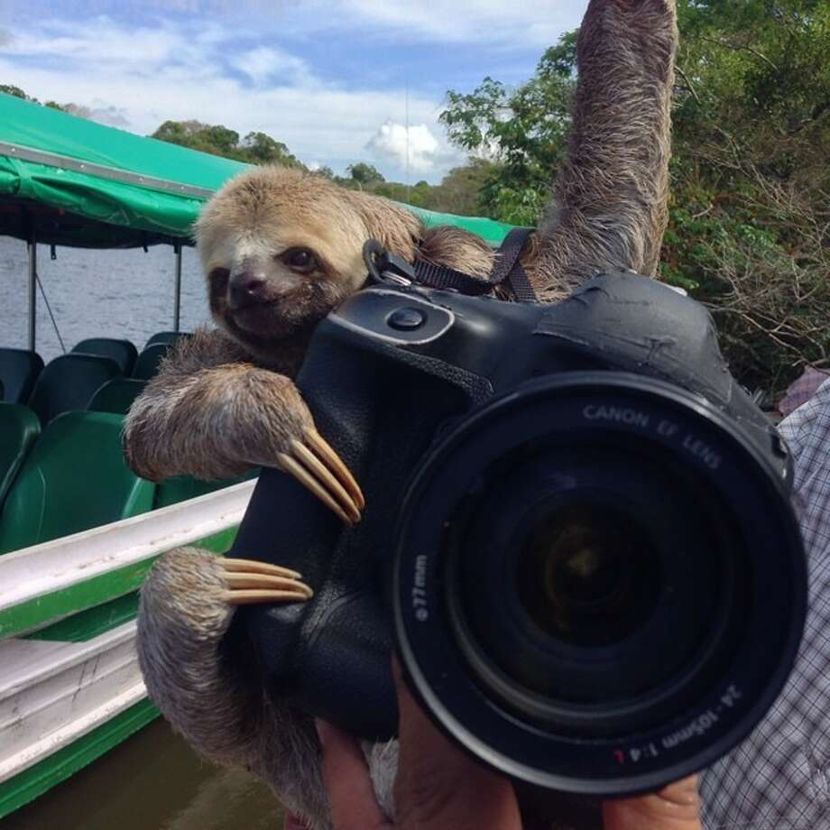This fella is ready to cover USA vs Portugal in Manaus. Photo: Julio Cortez, Associated Press / AP