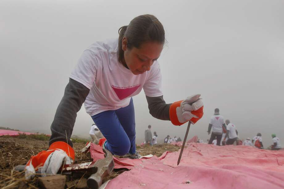 Katherine Hill places a nail to be hammered into a pink tarp along the slope of Twin Peaks on June 28, 2014 in San Francisco, CA. The Pink Triangle, symbol of the oppression of LGBT people, was built on Twin Peaks Saturday in recognition of the pride celebration. Photo: Craig Hudson, The Chronicle