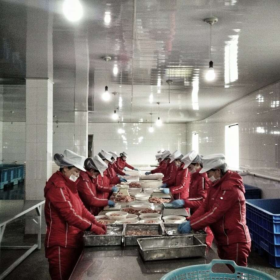 "North Korean workers sort seafood at a factory in Rajin.Related story: Instagram North Korea: Incredible, haunting images that give a rare glimpse inside the world's most secretive regime ""These Instagram photos, taken by the Associated Press's chief Asia 