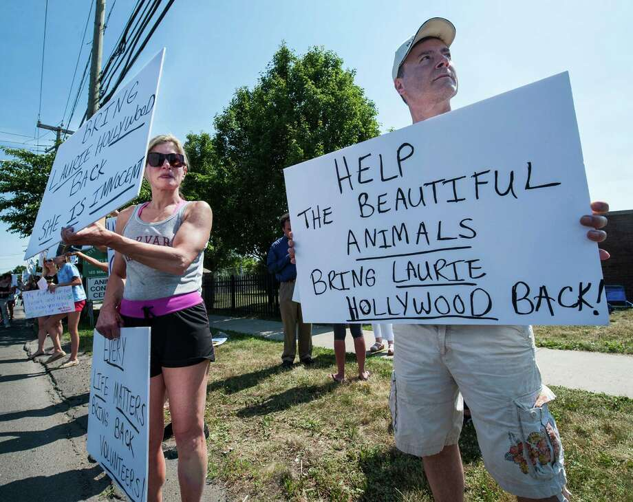 Friends of the Stamford Animal Shelter protest along Magee Avenue, Stamford, CT on Sunday, June 29th, 2014, They were protesting the recent dismissal of the Shelter's director, Laurie Hollywood. Photo: Mark Conrad / Connecticut Post Freelance