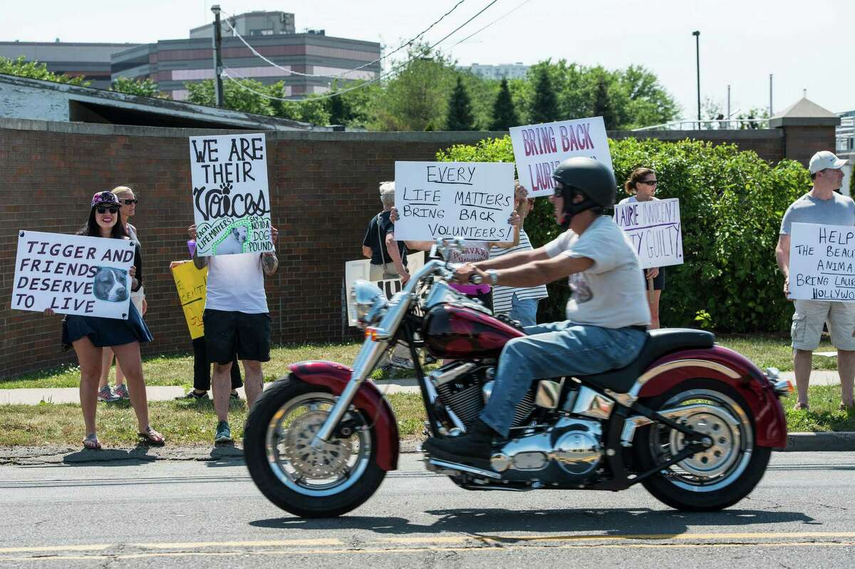 Friends of the Stamford Animal Shelter protest along Magee Avenue, Stamford, CT on Sunday, June 29th, 2014, They were protesting the recent dismissal of the Shelter's director, Laurie Hollywood.