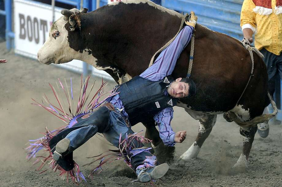 Elliot Jacoby of Fredricksburg, Texas, gets his hand tied up in the rope while being twisted around by a bull named Whirlpool at the PCRA Rodeo held at the Greeley Stampede Arena in Greeley, Colo, June 29, 2014. ( AP Photo/The Greeley Tribune, Jim Rydbom) Photo: Jim Rydbom, Associated Press
