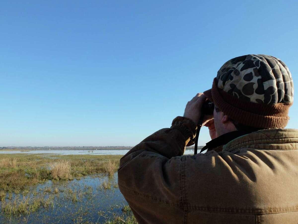 Birder Darrell Vollert scans the wetlands at the Katy Prairie Conservancy's Mary Manor Preserve.