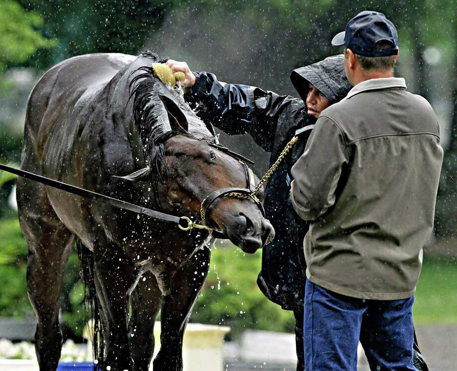 Belmont Stakes entrant Ride On Curlin reacts to bath water from assistant trainer Bridgett Lambert, center, following a morning gallop at Belmont Park race track in Elmont, NY., Thursday, June 5, 2014. Holding the colt is trainer Billy Gowan, right.  (AP Photo/Garry Jones) ORG XMIT: NYGJ108 Photo: Garry Jones / FR50389 AP