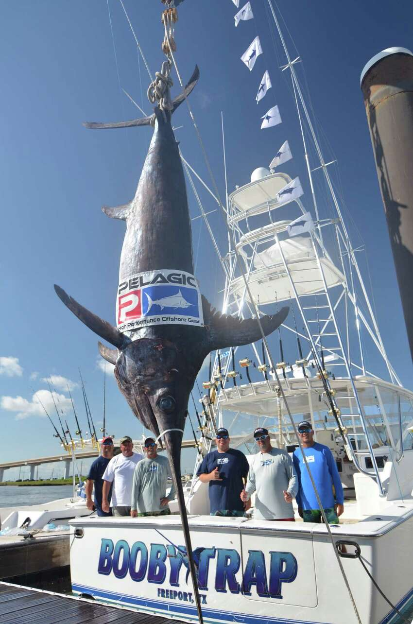 Texas record for swordish is 493 pounds, caught by Brian K. Barclay in Gulf of Mexico June 4, 2013.