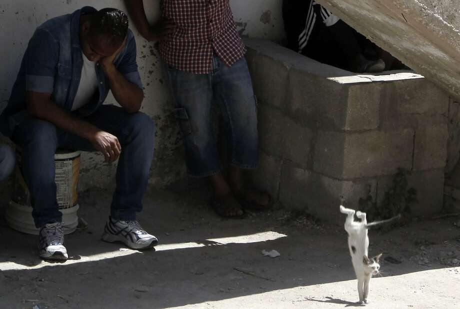 An acrobatic cat goes unnoticedby grieving men at the Jenin refugee camp in the Israeli-occupied West Bank. The men were mourning a teen killed by Israeli troops during an operation in the camp that appeared unrelated to Israeli raids in the southern part of the territory, where three Israeli teenagers were abducted and killed. Photo: Jaafar Ashtiyeh, AFP/Getty Images