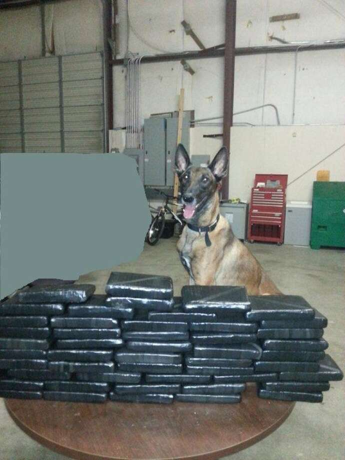 A detective and his K-9 partner located 48 bundles of cocaine concealed in two suitcases during a Tuesday traffic stop near Rosenberg. Photo: Fort Bend County Sheriff's Office