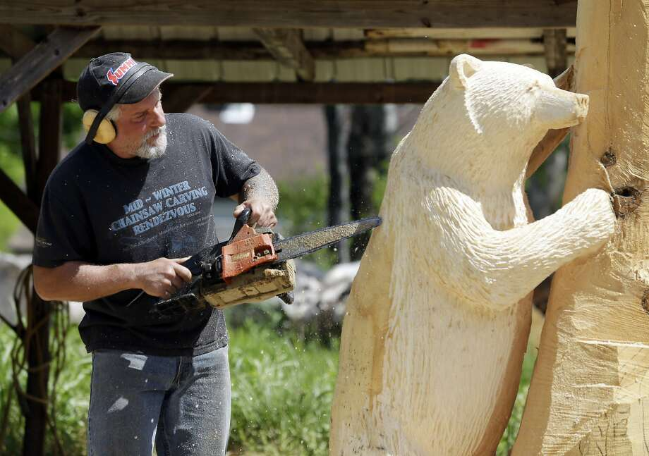 Mark Tyoe uses a chain saw to achieve remarkable detail as he sculpts a bear from a once-towering white pine tree, which he likes for its medium-soft wood. Photo: Mike Groll, Associated Press