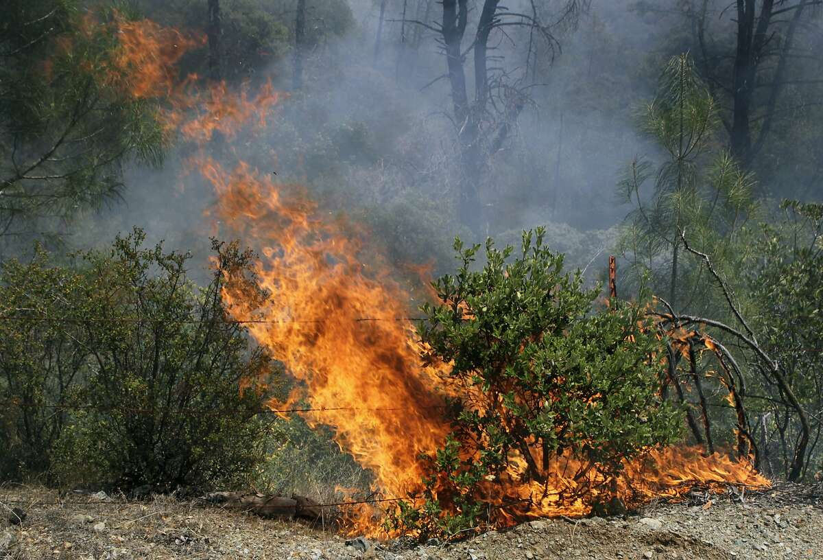 Brush burns out of control along Butts Canyon Road near Aetna Springs, Calif. on Wednesday, July 2, 2014. The Butts Fire has burned over 3,200 acres of mostly rugged terrain and destroyed as many as five buildings.