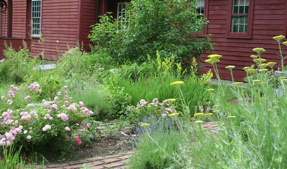 Wilton Historical Society will celebrate the opening of its rejuvenated 1740 Colonial Herb Garden by Connecticut Master Gardeners with a free reception on Thursday, July 17, from 4 - 7 p.m. Photo: Contributed Photo / Connecticut Post Contributed