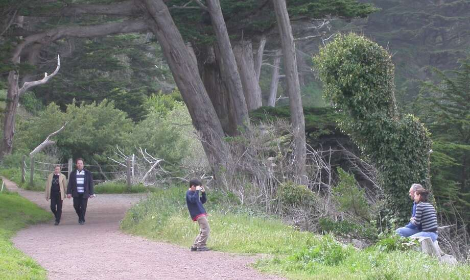 5. Coastal Trail routed along San Francisco Headlands Photo: Tom Stienstra, The Chronicle