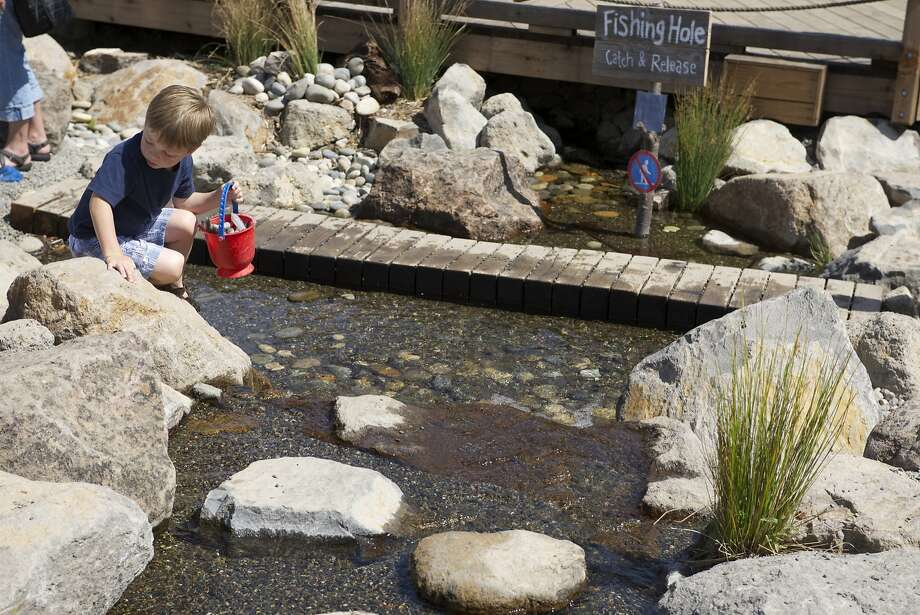 The Children's Museum of Sonoma County includes an outdoor play area, known as Mary's Garden. Photo: Steve Aja