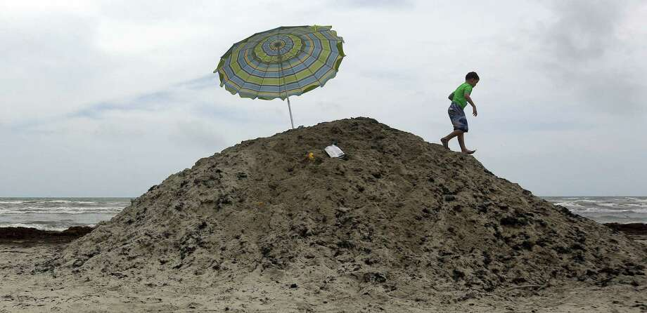A young boy plays on a pile of seaweed on the beach in Port Aransas. The Sargassum is piled and removed as it to washes onto the beach. Photo: Eric Gay / Associated Press / AP