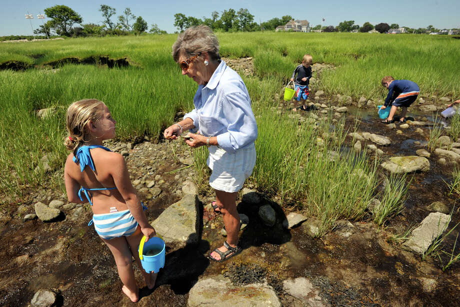 Olivia Hirsch, left, talks with marine biologist Sue Baker about the wildlife she found in the intertidal zone during Baker's expedition titled Life on the Edge, an exploration of the plants and animals that live in the intertidal zone, as part of the First Sunday Science program at the Seaside Center at Greenwich Point Park in Greenwich, Conn., on Sunday Jul 6, 2014. For the next First Sunday Science program on Sunday Aug. 3, Penny Howell, an official with CT DEEP's marine fisheries division, will talk about her research on the biodiversity of Long Island Sound and will explore the waters off of Greenwich Point Park. Photo: Jason Rearick / Stamford Advocate