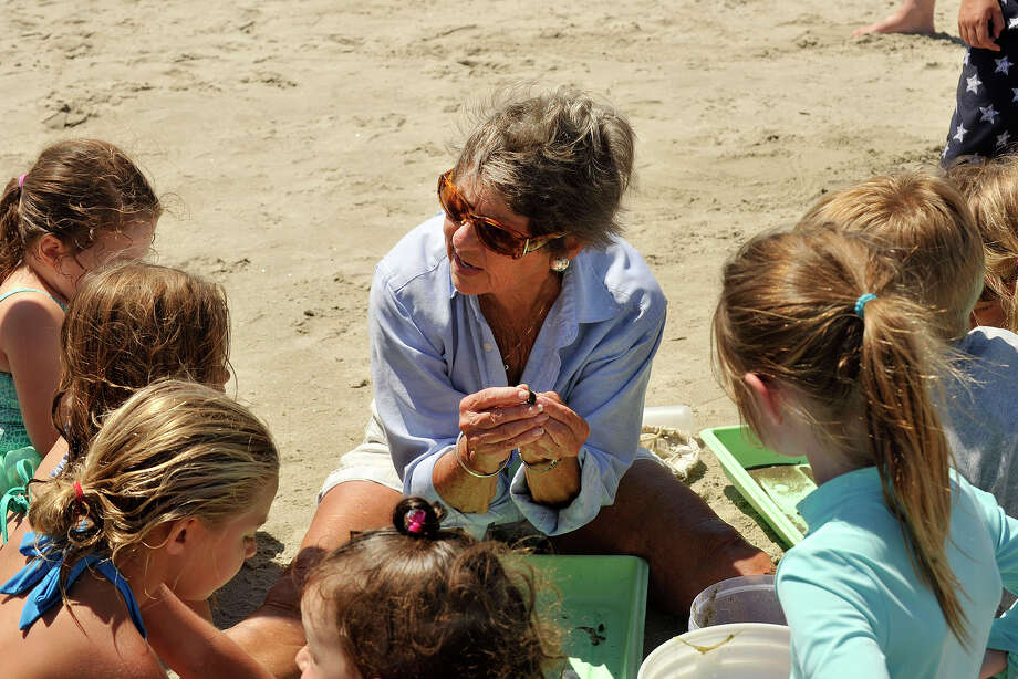 Marine biologist Sue Baker talks to children and their parents during her expedition titled Life on the Edge, an exploration of the plants and animals that live in the intertidal zone, as part of the First Sunday Science program at the Seaside Center at Greenwich Point Park in Greenwich, Conn., on Sunday Jul 6, 2014. For the next First Sunday Science program on Sunday Aug. 3, Penny Howell, an official with CT DEEP's marine fisheries division, will talk about her research on the biodiversity of Long Island Sound and will explore the waters off of Greenwich Point Park. Photo: Jason Rearick / Stamford Advocate