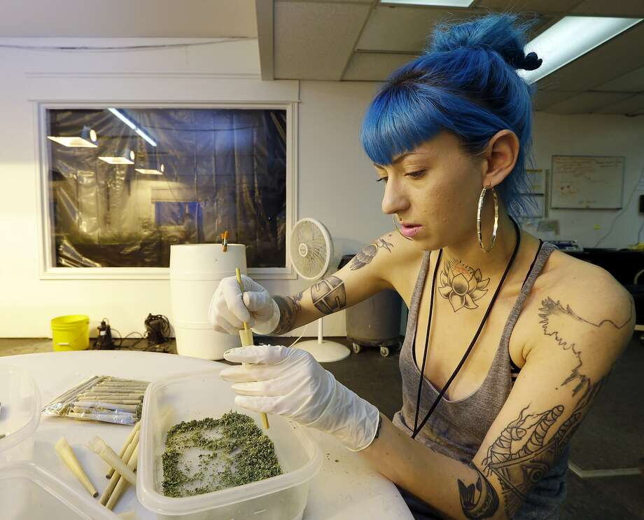 In this 2014 photo, Stevie Askew, a worker at Sea of Green Farms, packs recreational marijuana into blunts sold in stores after legal recreational pot sales began in Washington state that year. Photo: Ted S. Warren, Associated Press