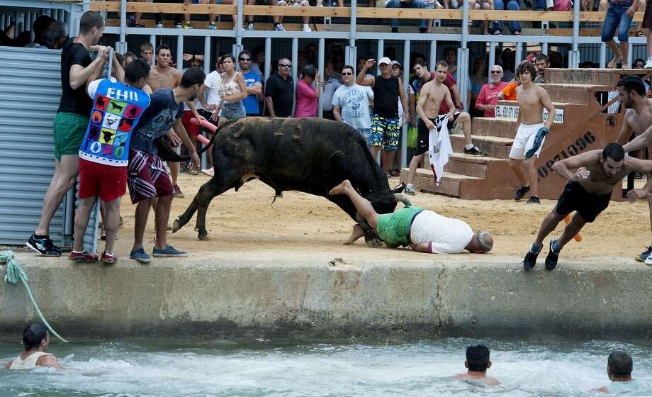 "Bounced by the bull: The idea in the traditional running of bulls in Alicante, Spain, known as Bous a la Mar (""Bull in 