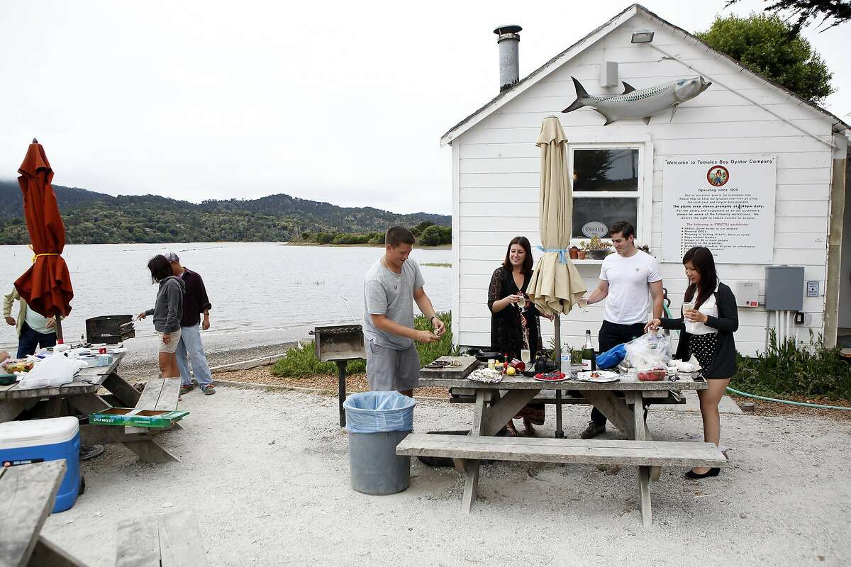 (L-R)David Gray, Sofia Yassin, Alex Yassin and Amy Ting set out a spread on a picnic table as they celebrate Sofia's birthday with oysters at the Tomales Bay Oyster Company in Marshall, CA, fFriday June 27, 2014.