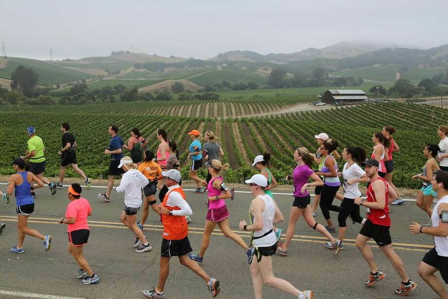 Runners enjoy last year's Napa to Sonoma Wine Country Half Marathon race through the Carneros region. Photo:  TJ Nelson
