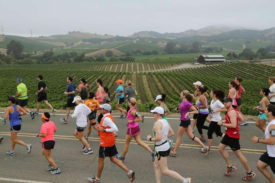 Runners enjoy last year's Napa to Sonoma Wine Country Half Marathon race through the Carneros region. Photo:  TJ Nelson