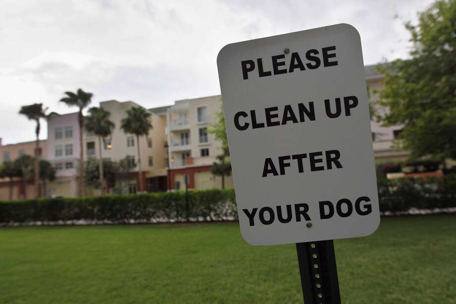 """4. Picking up after your dog.California does not have a statewide """"pooper scooper law,"""" instead it is up to local counties and cities to set regulations. If it isn't illegal in your area you should still be a good person and pick up after your pets. Photo: Joe Raedle, Getty Images"""