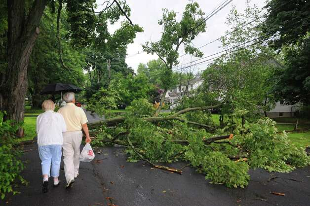 A couple walks around a fallen tree branch on Borthwick Street following a sudden downpour on Wednesday July 9, 2014 in Delmar, N.Y. (Michael P. Farrell/Times Union) Photo: Michael P. Farrell