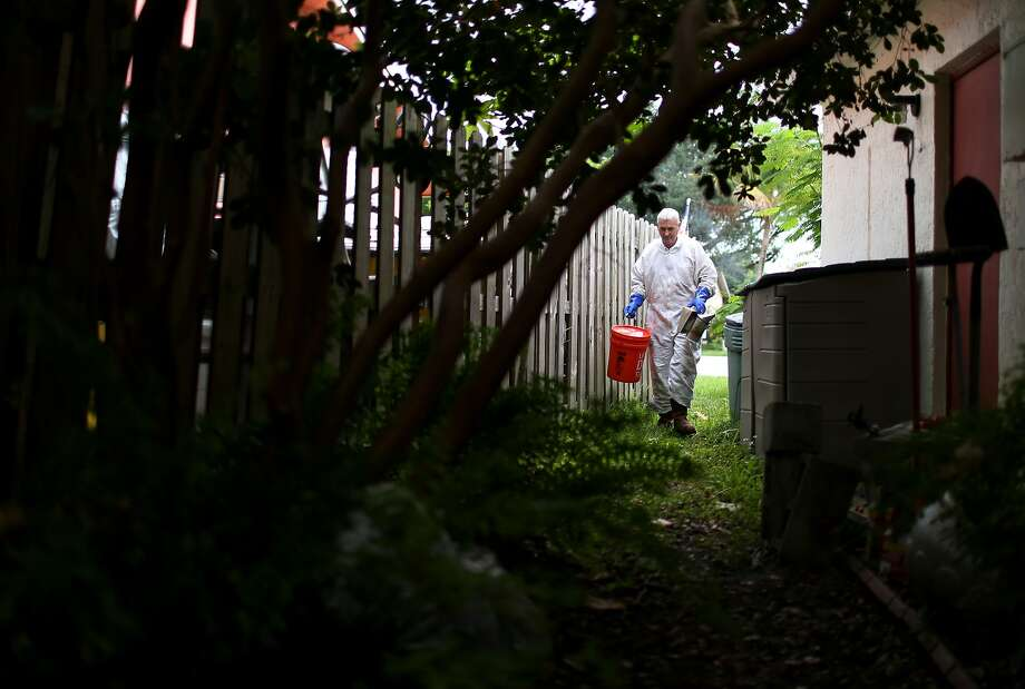 MIAMI, FL - JULY 09:  John Herring, of Tropical Apiaries Inc. Bee Removal Specialist, prepares to relocate a bee colony that has taken up residence near a house, after receiving a call from the home owner on July 9, 2014 in Miami, Florida. Mr. Herring, when it is possible, will not use pesticides to kill a colony but will humanly move the bees to his bee hives in an effort to help bee populations which in Europe and North America are under stress due to Colony Collapse Disorder.  (Photo by Joe Raedle/Getty Images) Photo: Joe Raedle, Getty Images