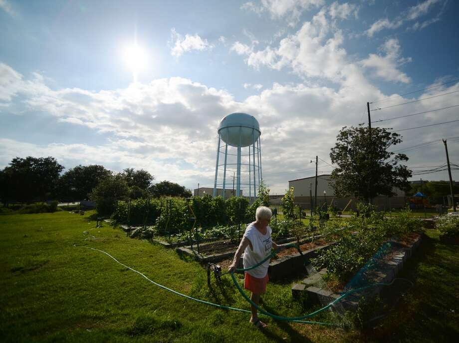The sun beams down on Chrissie Joyner as she waters plants at The Giving Field on Wednesday afternoon. While calendars might say that summer is still more than two weeks away, rising temperatures and humidity levels say it's arrived early. Photo taken Wednesday 6/4/14 Jake Daniels/@JakeD_in_SETX