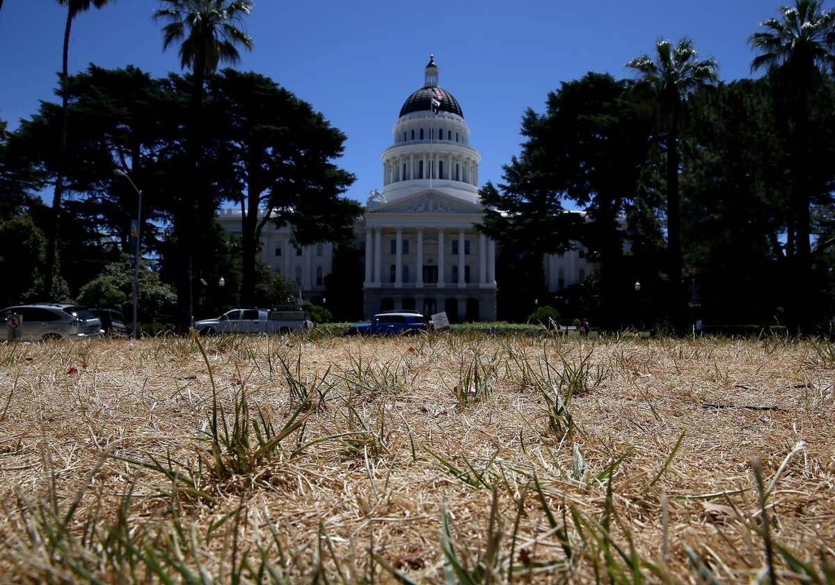 The lawn in front of the California State Capitol is seen dead on June 18, 2014 in Sacramento, California. As the California drought conitnues, the grounds at the California State Capitol are under a reduced watering program and groundskeepers have let sections of the lawn die off in an effort to use less water.