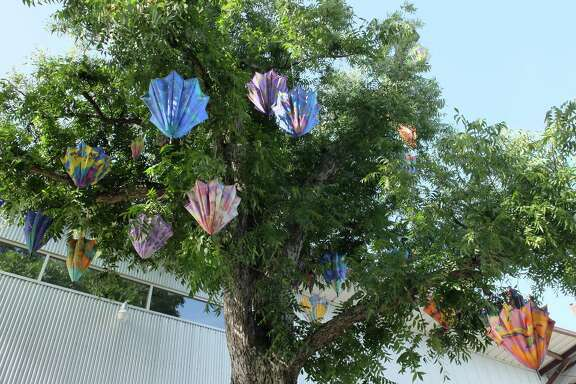 """Jo Ann Fleischhauer's """"Sexual Selection,"""" an installation of 116 custom-printed parasols, hangs in large oak trees beside Inversion Coffee House and Art League Houston, 1953 Montrose Blvd., through July 26."""