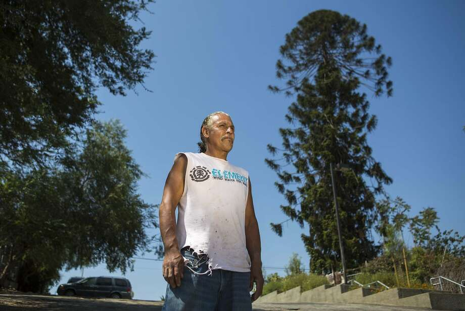 "Fernando Trejo lives across from ""El Pino Famoso,"" which appeared in the '93 film ""Blood In Blood Out."" Photo: Jabin Botsford, McClatchy-Tribune News Service"