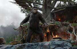 """Recently released """"Dawn of the Planet of the Apes"""" shows a blighted downtown San Francisco and Marin County woods filled with intelligent apes."""