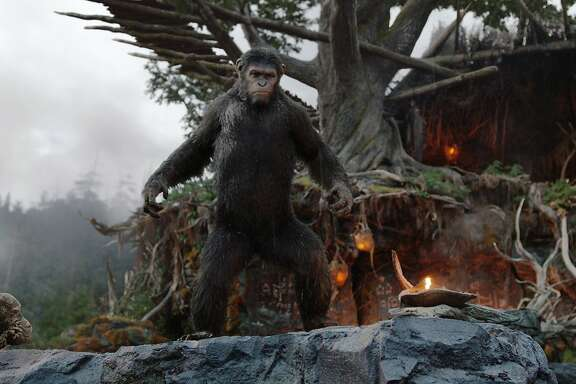 "Recently released ""Dawn of the Planet of the Apes"" shows a blighted downtown San Francisco and Marin County woods filled with intelligent apes."