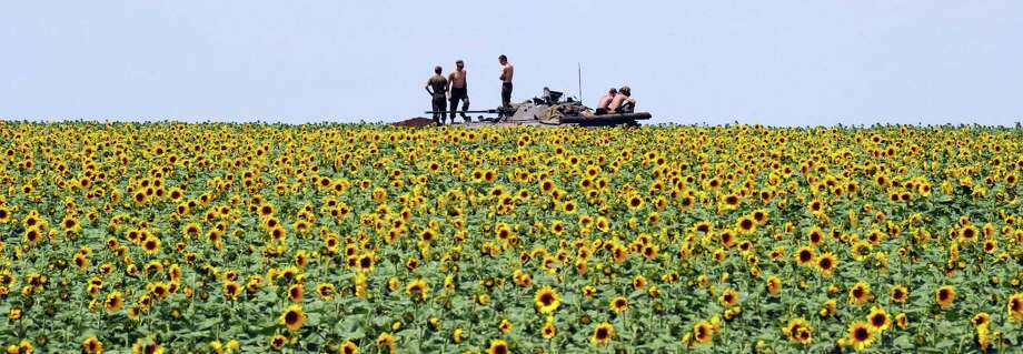 Ukrainian government soldiers take up a position in a sunflower field south of Donetsk. They have massed tanks and armored vehicles 12 miles south of the rebel-held city. Photo: Dominique Faget / Getty Images / AFP