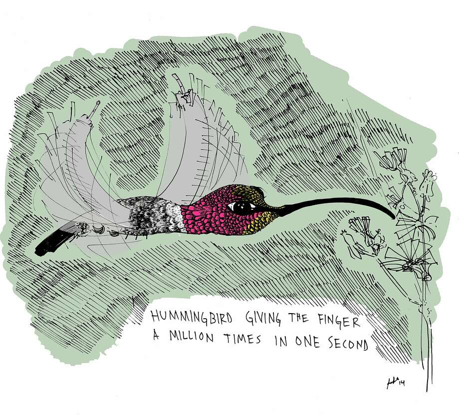 "Sara Lautman's ""Hummingbird"" Photo: Courtesy Of The Artist"