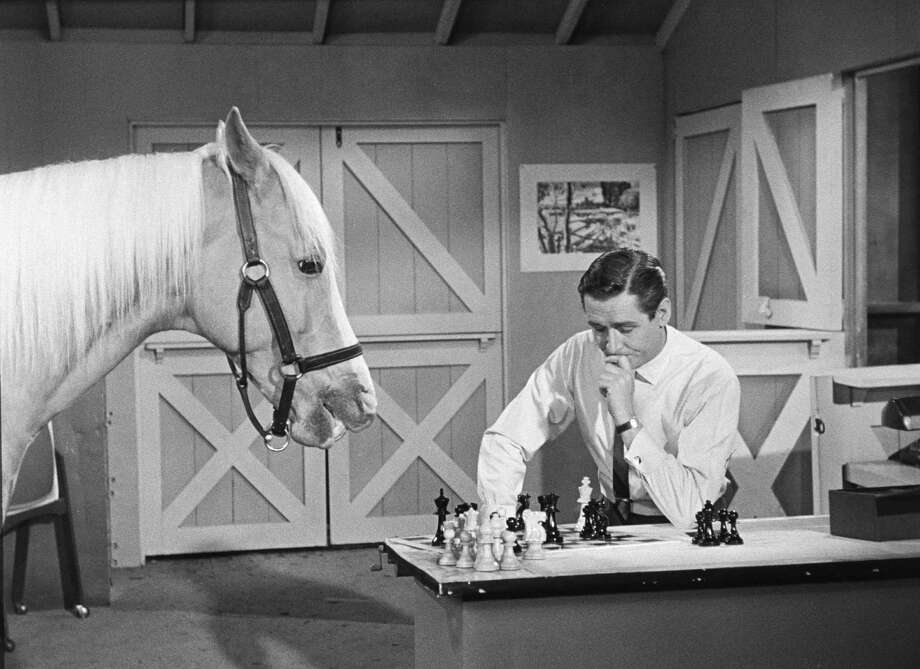 "Alan Young, 1961Born:  Nov. 19, 1919Young is best known as Mr. Ed's owner, Wilbur, on the classic TV show ""Mr. Ed."" Photo: CBS Photo Archive, Getty Images / 2005 CBS WORLDWIDE INC."