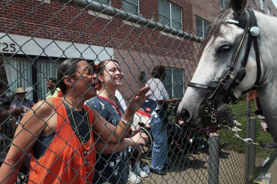 The annual Puerto Rican Parade of Fairfield County heads down Park Avenue in Bridgeport, Conn. on Sunday, June 13, 2014. Photo: BK Angeletti, B.K. Angeletti / Connecticut Post freelance B.K. Angeletti