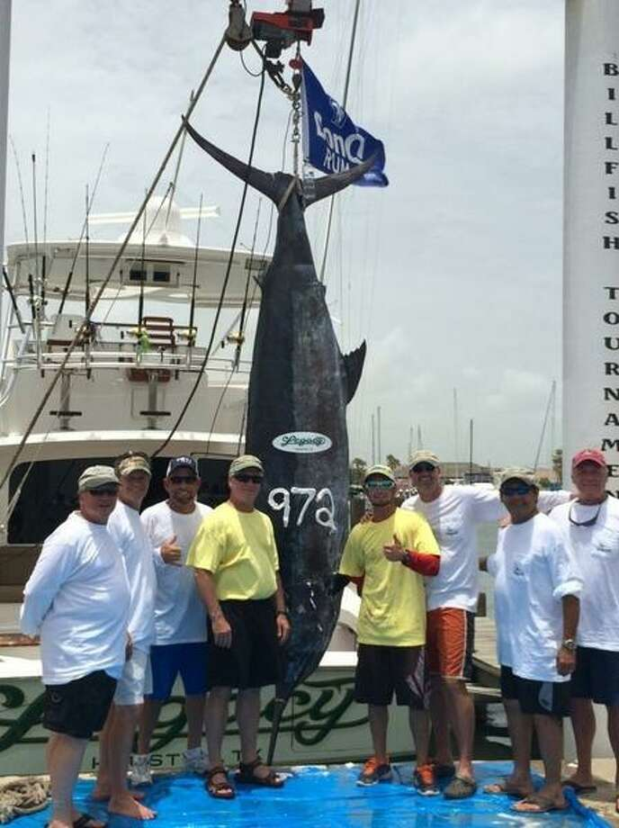 Legacy Fishing Team reeled in a record-setting blue marlin on July 11, 2014. The fish weighs 972.7 pounds and measures 137.5 inches. Photo: Courtesy,  Kevin Deerman