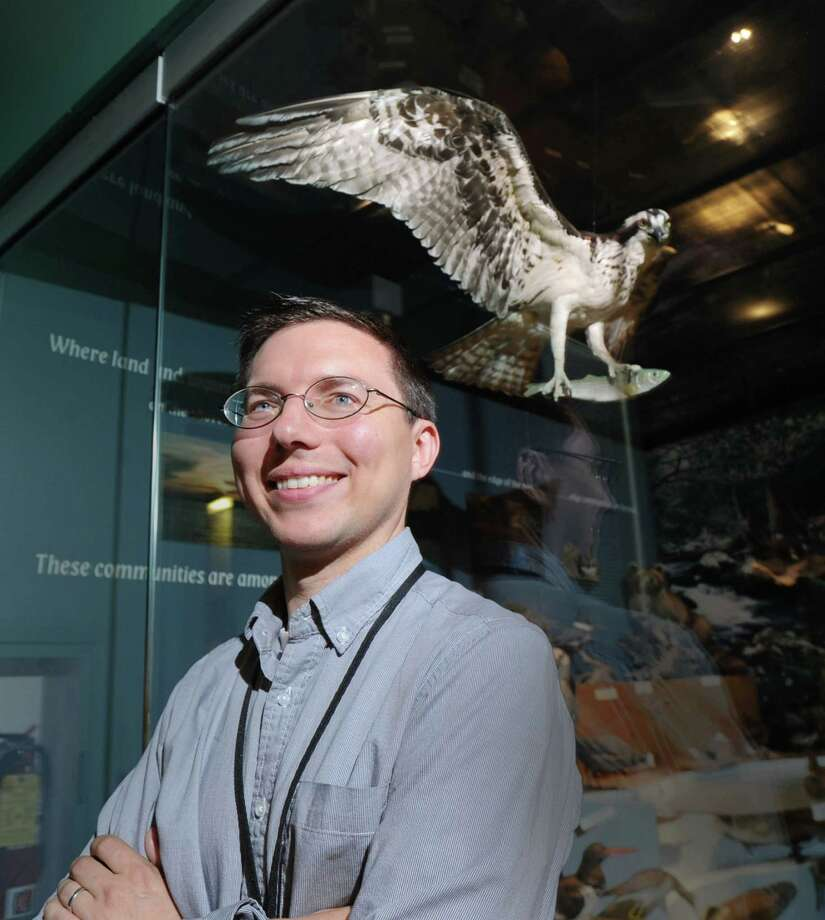 Bruce Museum Curator of Science, Daniel Ksepka, stands near an exhibit featuring an osprey at the musuem in Greenwich, Conn., Friday, July 11, 2014. Ksepka, a paleontologist, led a study of the recently identified fossil of Pelagornis sanders, an extinct bird that lived 25 to 28 million years ago and had the largest-known avian wingspan in history, about 20 to 24 feet (6.1 to 7.4 meters). Photo: Bob Luckey / Greenwich Time